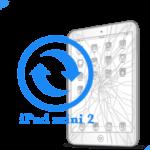 iPad - Замена стекла (тачскрина) mini Retina