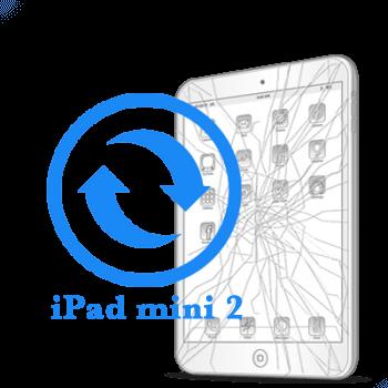 Замена стекла (тачскрина) iPad mini Retina