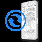iPhone SE - Заміна скла (тачскрину)