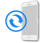 iPhone SE - Замена экрана (дисплея) оригинал
