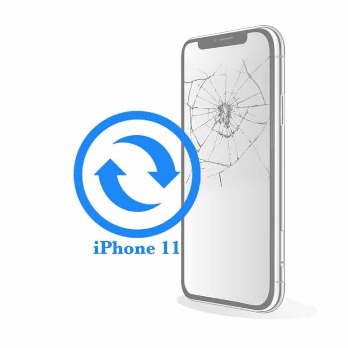 iPhone 11 - Замена экрана (дисплея) копия