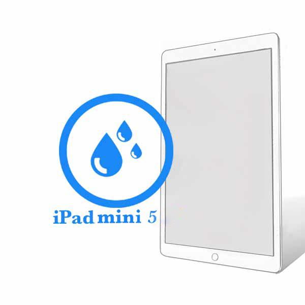 iPad - Чистка после попадания воды Mini 5