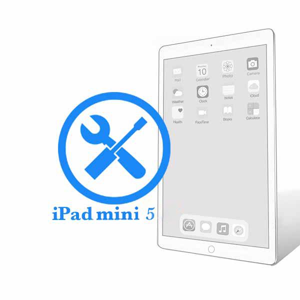 iPad - Ремонт кнопки включения (блокировки) Mini 5