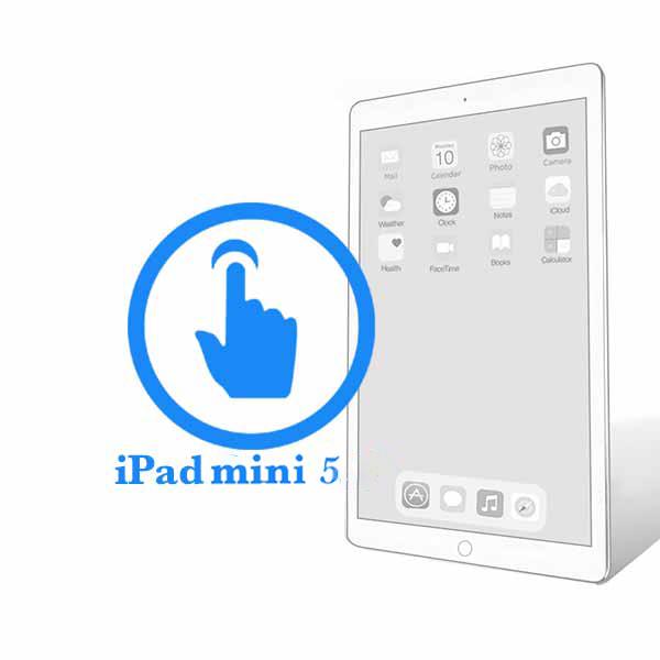 iPad - Заміна скла (тачскрину) Mini 5