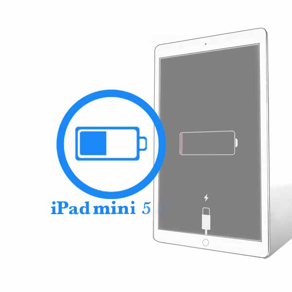 iPad - Заміна батареї (акумулятора) Mini 5