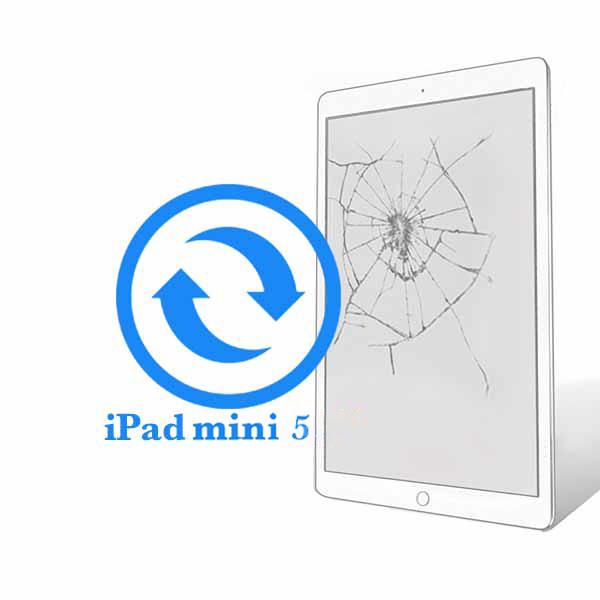 iPad - Заміна екрану (дисплею) Mini 5