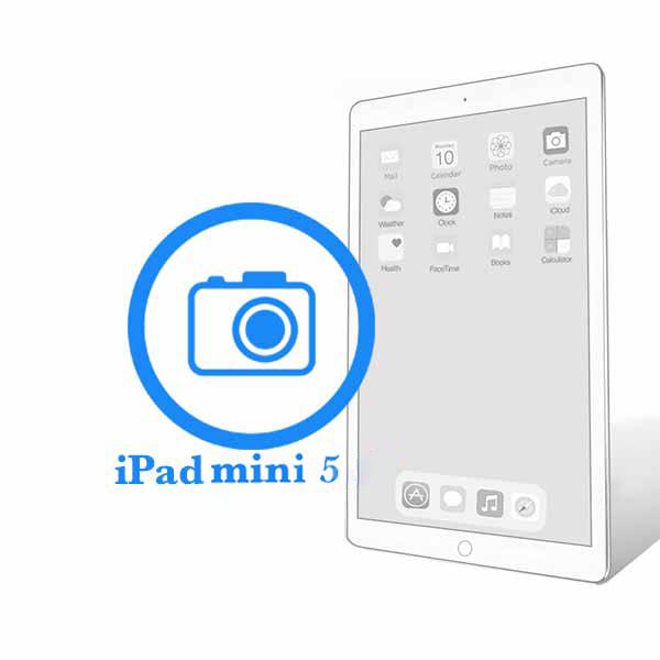 iPad - Замена основной (задней) камеры Mini 5