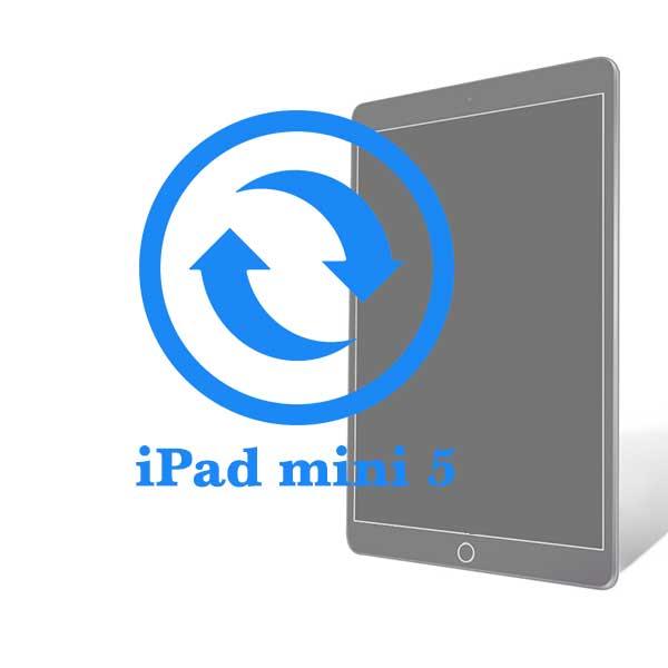 iPad - Замена экрана (дисплея) Mini 5