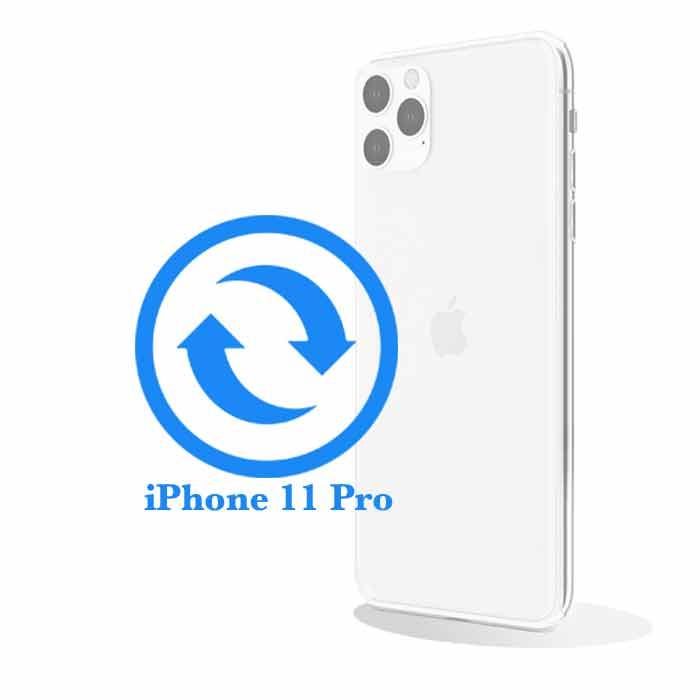 Ремонт iPhone 11 Pro Max Замена стекла задней крышки (корпуса)