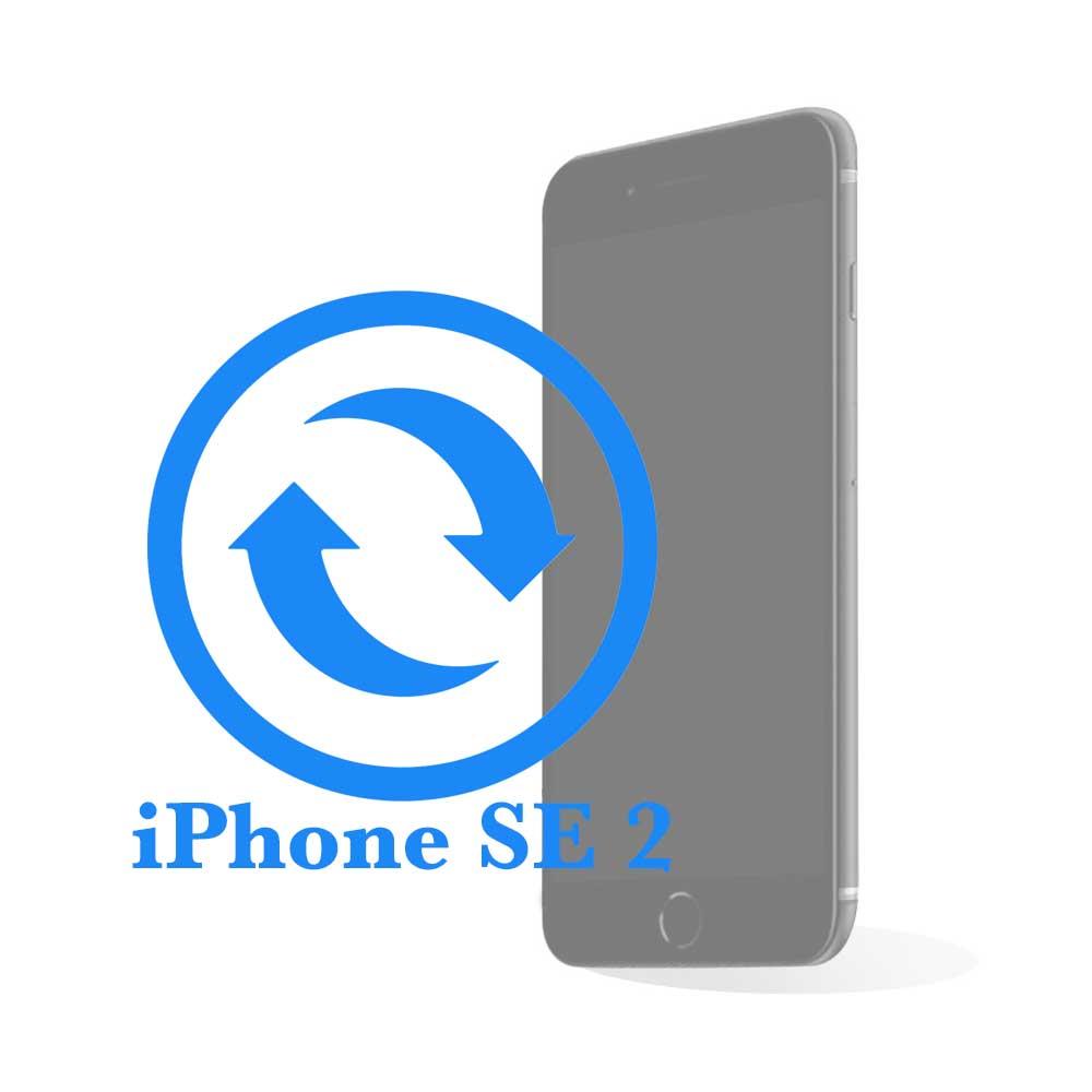 iPhone SE 2 - Замена экрана (дисплея) копия