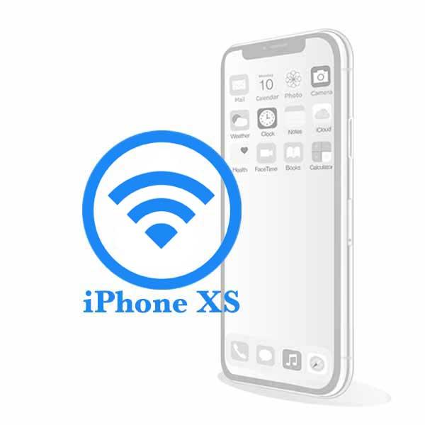 iPhone XS - Заміна Wi-Fi антени