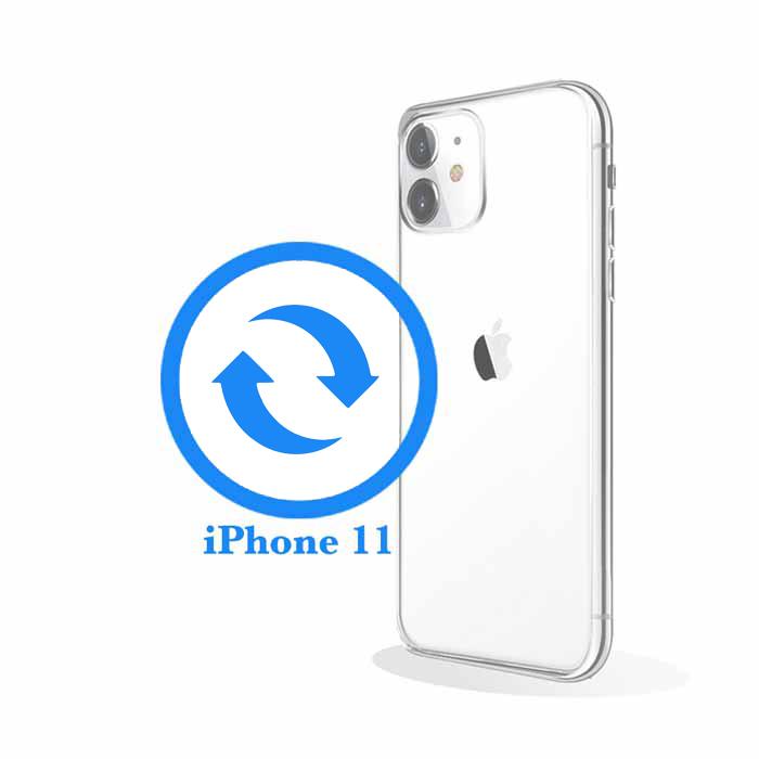 iPhone 11 - Замена корпуса (задней крышки)