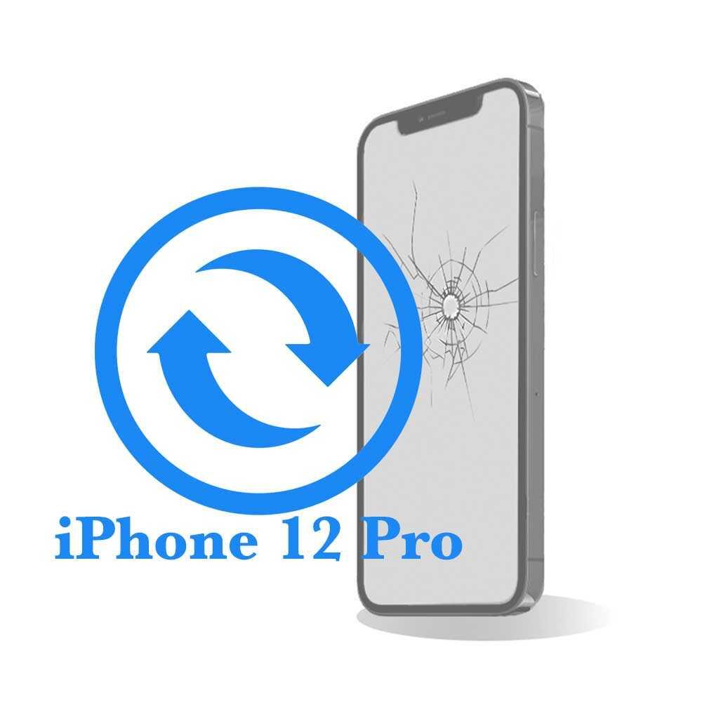 Pro - Замена экрана (дисплея) iPhone 12 копия