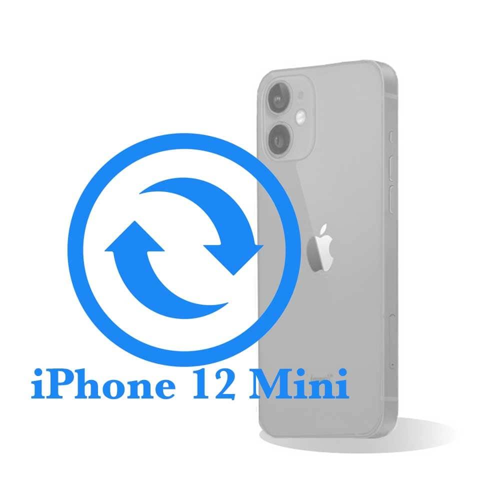 iPhone 12 mini - Замена стекла задней крышки