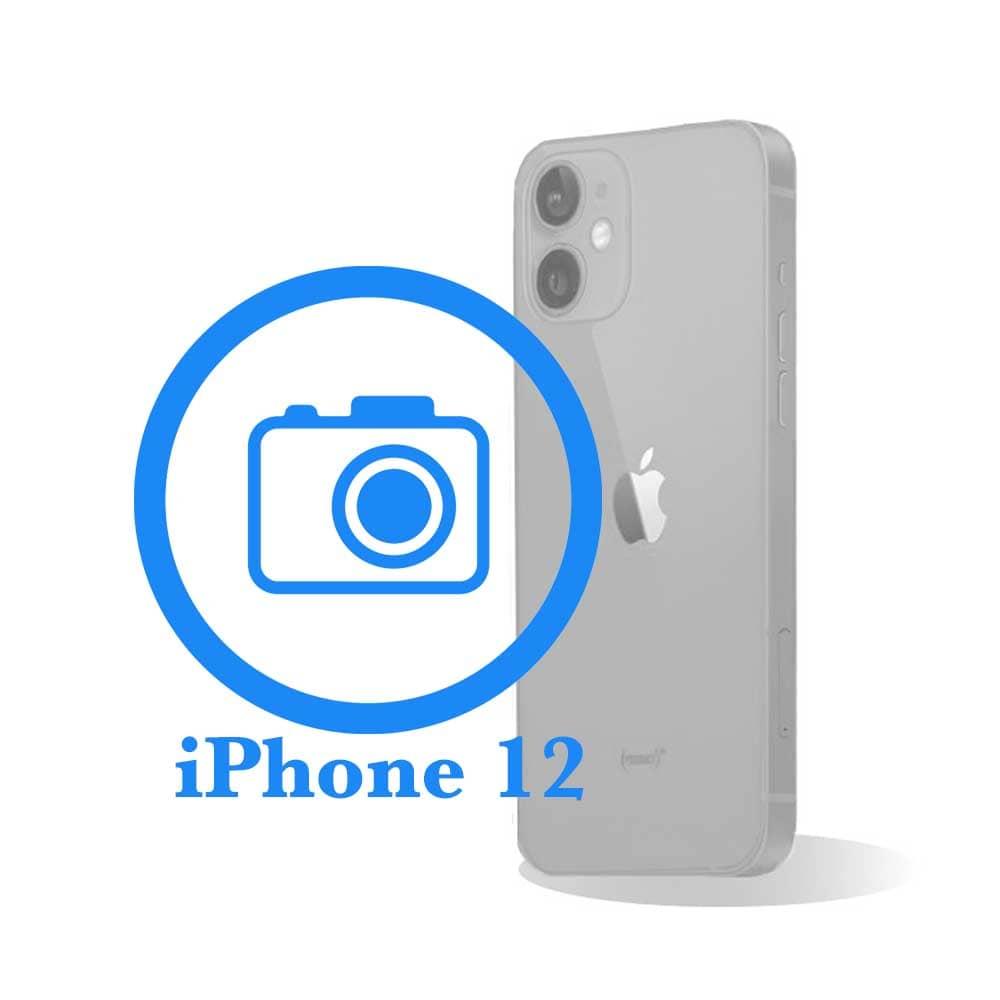iPhone 12 - Заміна задньої (основної) камери