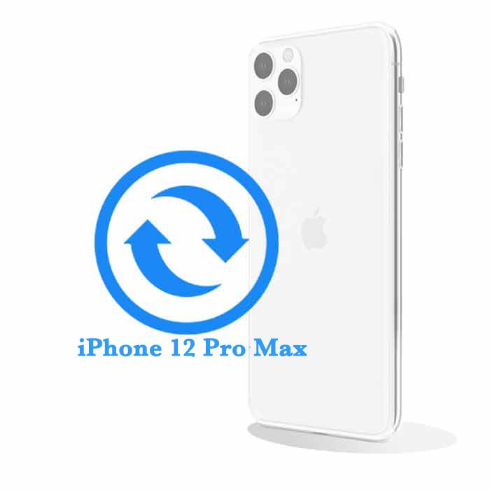 Pro - Замена стекла задней крышки iPhone 12 Max