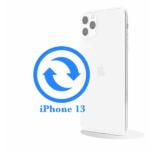 iPhone 13 - Замена стекла задней крышки