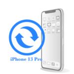 Pro - Замена экрана (дисплея) iPhone 13