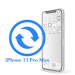 Pro - Заміна екрану (дисплея) iPhone 13 Max